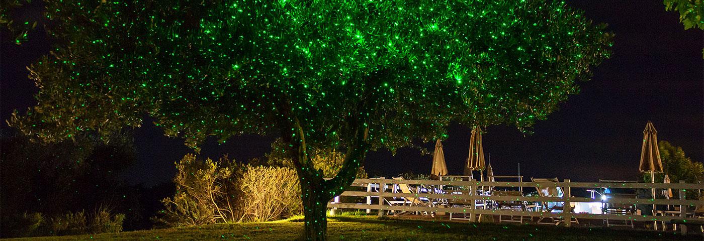 Proiettore Luci Natalizie Opinioni.Proiettore Luci Natale Cinque Consigli D Uso Luminal Park