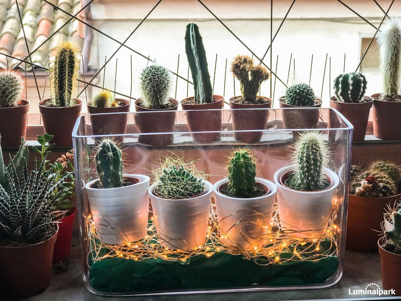 Illuminare piante con led illuminazione artificiale per le piante