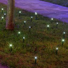 24 Garden Dot Ministicks, 24 m, powerled blanc froid, câble vert