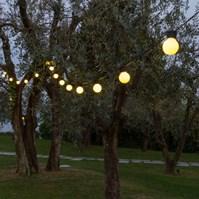 Partybeleuchtung Und Dekoration Luminal Park