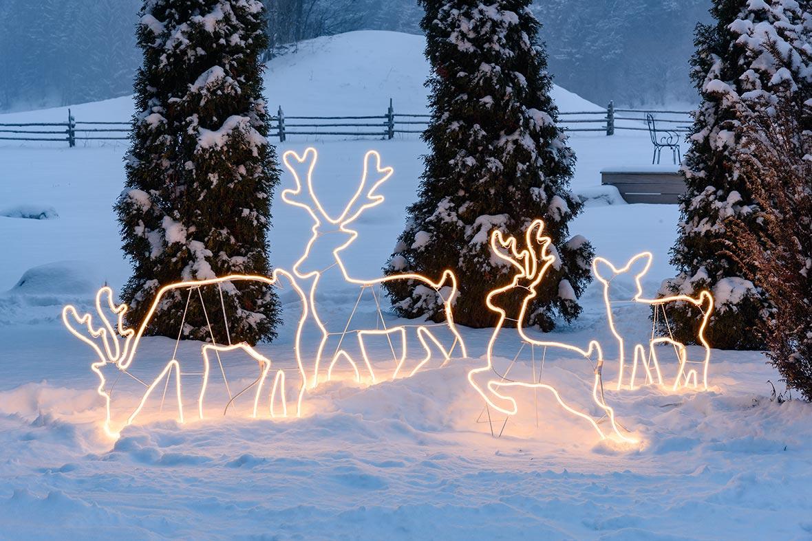 Elektrische Weihnachtsbeleuchtung Garten.Weihnachtsbeleuchtung Für Den Garten 2019 Luminal Park